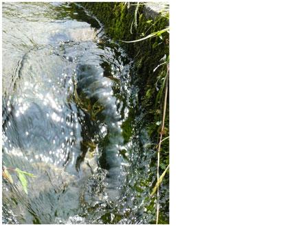 富田の水の参考画像